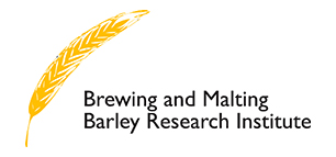 BMBRI helps to ensure new Canadian malting barley varieties are better for growers and meet the premium standards of BMBRI members and their customers.